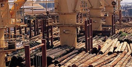sector madera